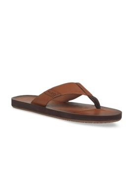 Brown Solid Slip-On