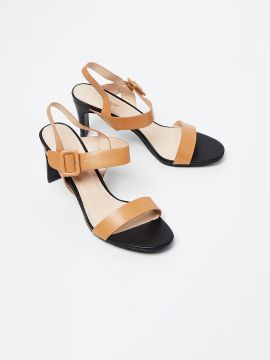 Black & Tan Brown Solid Sandals